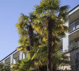 Aussenausicht La Barca Blu  Hotel