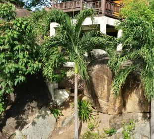 Schöne Bungalows und Suiten  Hotel Coral Cove Chalet