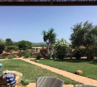 Blick von der Apartmentterrasse auf den Pool Agroturisme Can Pere Rei