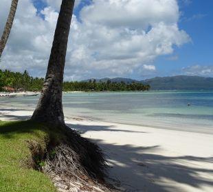 Strand COOEE at Grand Paradise Samana