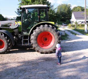 Der Traktor war für unsere Tochter das Highlight.