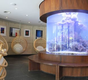 Riesiges Aquarium an der Rezeption Leading Family Hotel & Resort Alpenrose