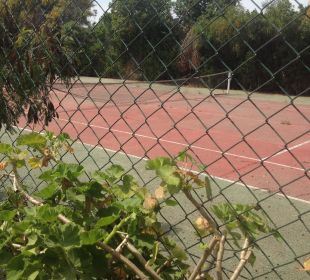 Tennis Hotel Club Acquaviva