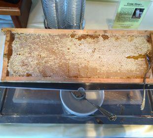 Honig aus der Wabe MONDI-HOLIDAY First-Class Aparthotel Bellevue