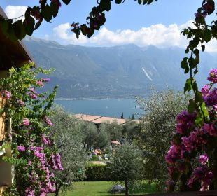 Blick zum See Hotel Caravel