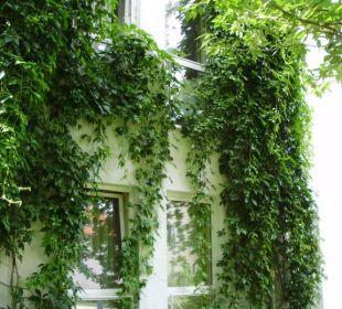 Unser Zimmerfenster von außen Hotel Schloss Schweinsburg