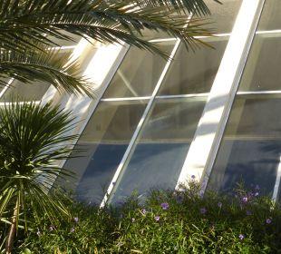 Verschmutze Fenster im Hallenbad SENTIDO Perissia