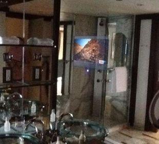 TV im BadezimmerSPIEGEL Hotel Grand Hyatt Shanghai