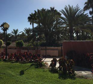 Blick aus der Suite Dunas Suites&Villas Resort