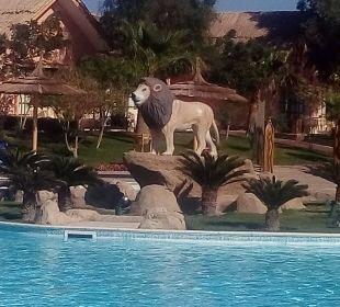 Der Löwe Jungle Aqua Park