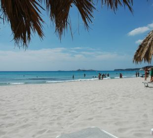 Ombrelloni sulla spiaggia Hotel Residence Fenicia