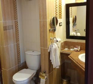 Zimmer Albatros Palace Resort