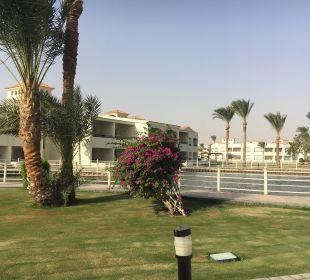 Ausblick von unserer Terasse Dana Beach Resort