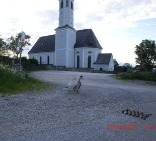 Kirche Litzdorf Oberulpointhof