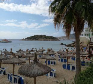 Strand von Camp de Mar  Olimarotel Gran Camp de Mar