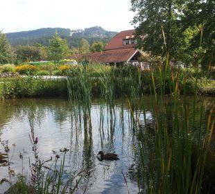 Kurpark mit Blick zum Silberberg Wohlfühl-Ferienwohnung Fritz Bodenmais