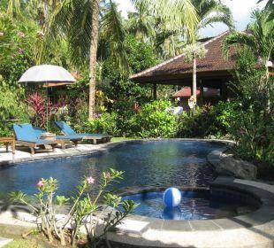 Der Pool Saraswati Holiday House