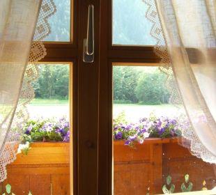 Romantischer Blick aus dem Zimmer  Landhaus Rudigier
