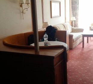 Vom Bett aus Hotel Bellevue & Austria