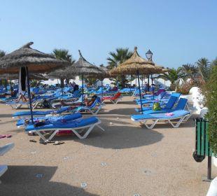 Liegenbereich am Pool Hotel Fiesta Beach Djerba