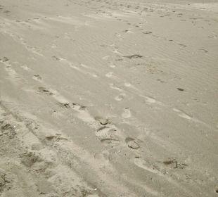 Strand auf Juist Strandhotel Kurhaus Juist