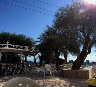 Bar und Pool Hotel Paradise Corfu