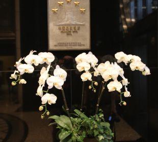 Hotelklassifizierung Hotel Grand Hyatt Shanghai