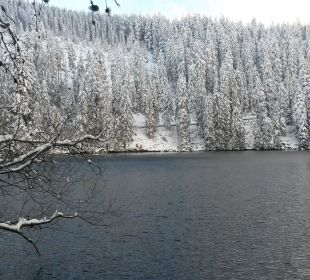 Mummelsee im Schnee Berghotel Mummelsee