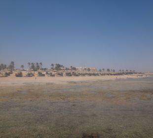 Blick vom Steg auf den Strand