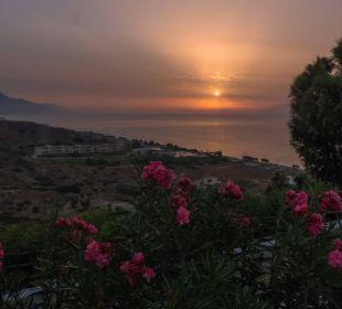 Ganz oben am Hotel Hotel Lagas Aegean Village