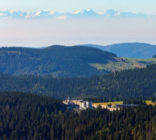 Das perfekte Panorama Familotel Hotel Feldberger Hof