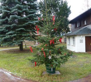 Weihnachtlich geschmücktes Bäumchen Relais & Châteaux Hotel Bayrisches Haus