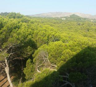 Blick aus dem Zimmer 452 Hotel & Spa S'Entrador Playa