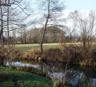 Das Fließ hinter dem Appartement-1 NaturApartments & LandHaus Stauensfließ