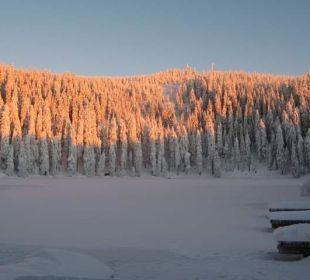 Sonnenaufgang am See Berghotel Mummelsee