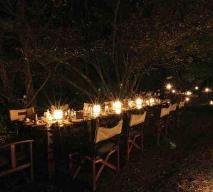 Abendessen unter Sternenhimmel Mara Bush Camp