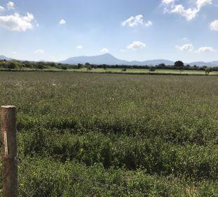 Ausblick Agroturisme Can Pere Rei