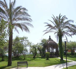 Herrliche Palmen Hotel Concorde De Luxe Resort