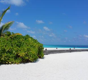 Endlose Weite mit weißem Sand Hotel Constance Moofushi Resort