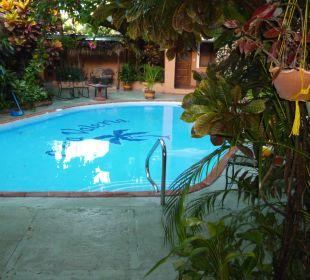 Zentral gelegener Pool