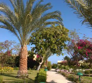 Hotelanlage Three Corners Fayrouz Plaza Beach Resort