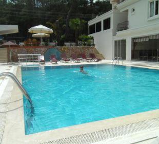 Erfrischend und sehr sauber Hotel Forest Park