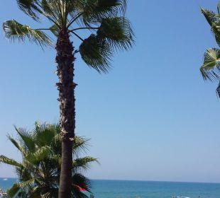 Ausblick von der Beachbar am Tag  Hotel Horus Paradise Luxury Club