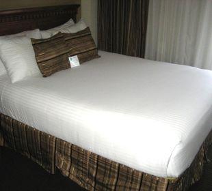 Bett Best Western Hotel Bayside Inn