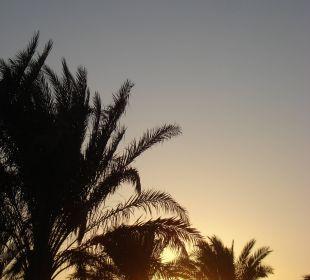 Sonnenaufgang 2 Hotel Steigenberger Coraya Beach