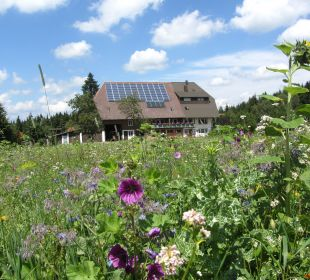 Oberjosenhof in mitten von Blumen Ferienbauernhof Oberjosenhof