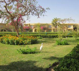 Gartenbewohner Three Corners Fayrouz Plaza Beach Resort