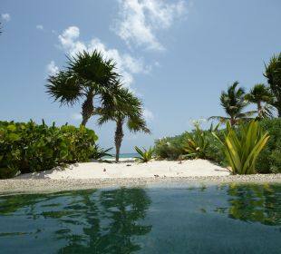 Foto aus dem Pool zum Strand Secrets Maroma Beach Riviera Cancun