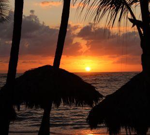 Sonnenaufgang am Strand VIK Hotel Cayena Beach Club