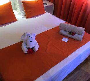 Zimmer Fodele Beach & Water Park Holiday Resort